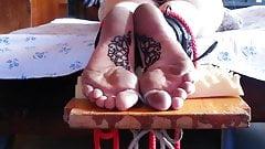 Ametaeur Torture (5)