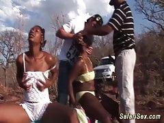 wild african safari sex orgy's Thumb
