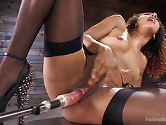 Athletic Goddess Daisy Ducati Squirts Everywhere