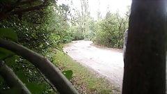 aurelia slut in wood road