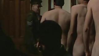 Colin Friels naked (1986)