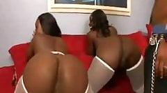 Taquilla & Hershey Threesome