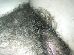 Hairy Kay showing bush