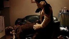 Two Gay Furries Fucking