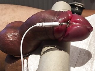 Subject L2's pumped cock getting its first estim treatment