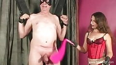 Cock Whipped