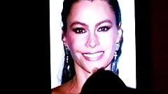 Sofia Vergara Tribute