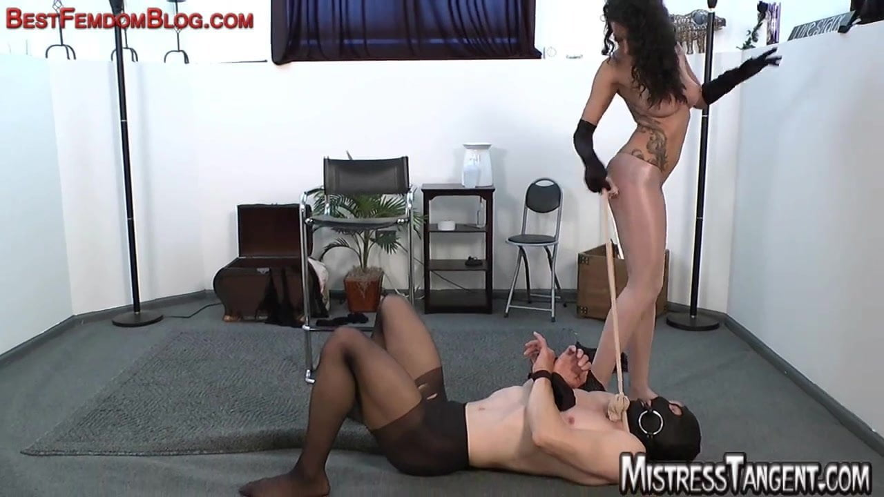 Girls Fucked By Cow