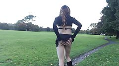 Tranny flashing in park