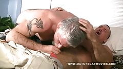 Two hot and hairy mature daddies fucking each other