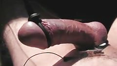 Electro:  hard dick HFO cum