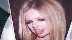 Tribute 4 Avril Lavigne n. 11