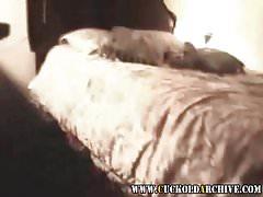 Cuckold Archive Three BBC bulls fucking sissys wife