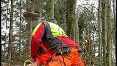 Arbeitskumpel bei der Arbeit im Wald
