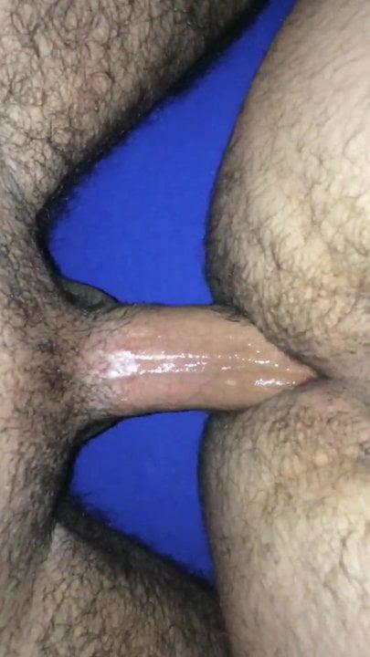 meleg ázsiai medve pornó