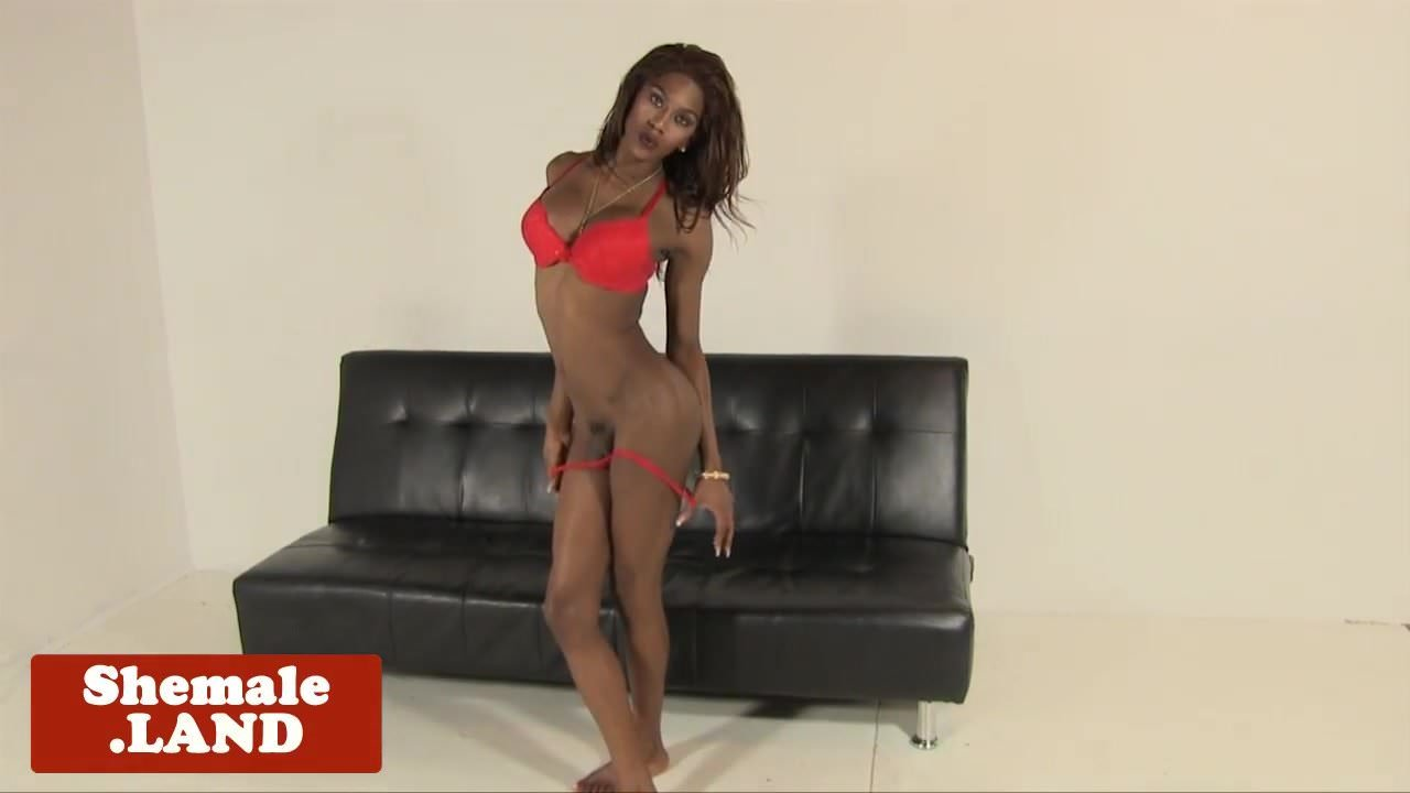 Cums After Ebony Beauty Shemale Jerking Solo ECQBWroxde