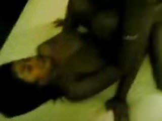 Download video bokep Melayu 3some di hotel Mp4 terbaru
