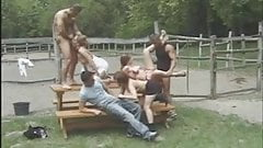 Good Old Fashioned Picnic Table Orgy