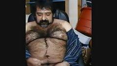 Big hairy bear and hairy body