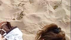 levrette a la plage