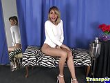 Seductive trans beauty solo playing with cock