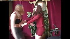 Cat Fighting at Clips4sale.com