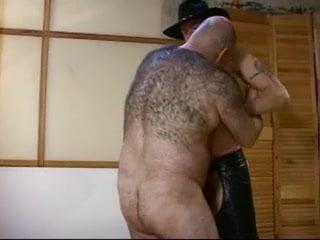 cowboy Gay bear