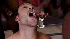Cute white guy takes black cum in mouth