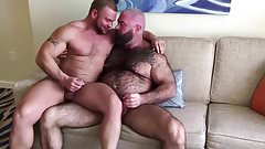 Muscle bear will porn angell