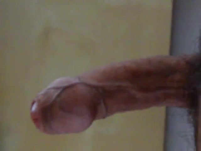 Foreskin on cock