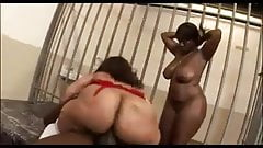 Phat asses threesome