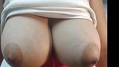 Perfect titties