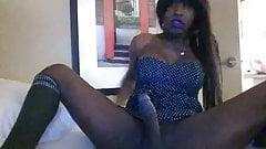 Sexy black shemale solo