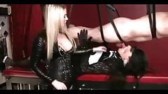 Mistress sissy to suck cock
