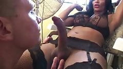 Hung Babe Gets Sucked & Fucks