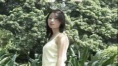 Asian Oriental Flower Series Vol 12