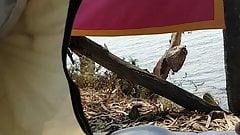 Mi masturbo in tenda davanti al mare, grande sbarrata!