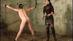 Great whipping session