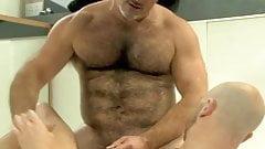 Adult sex dvd free