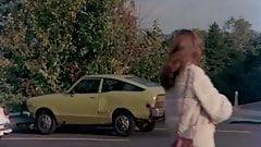 Velvet High (1981)