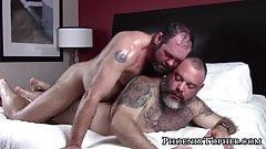 Macho bear daddy bareback pounding big gray bear