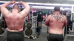 Strongman daddy bear muscle bulge