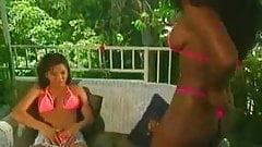 2 Black Lesbians Eating White One Free Porn D4 Xhamster