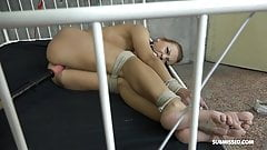 Morgan Rodriguez tied gagged toyed and vibed to orgasm