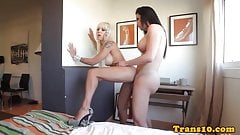 Bigtitted tgirl toyed before assfucking girl