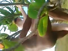 white hubby films wife getting fucked in a tree