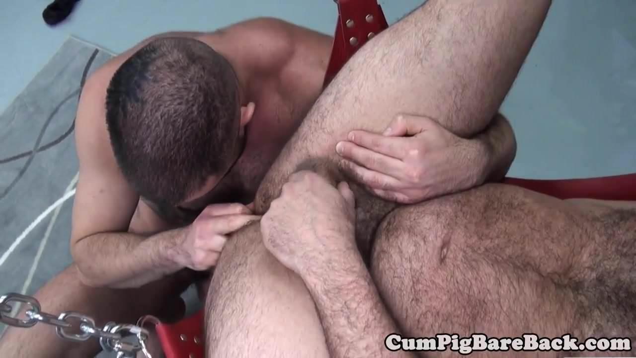 gay black sir stackz porn