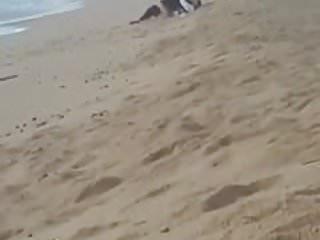 Casal flagrado na praia(Couple caught on the beach)