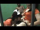 2 sissy crossdressers banged in jail