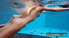 Hairy amateur milf flasher underwater public vacation